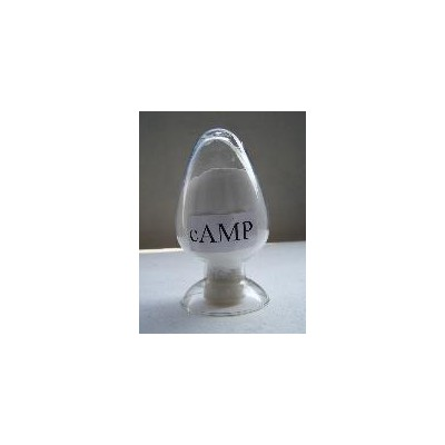环磷腺苷 cAMP CAS NO.60-92-4